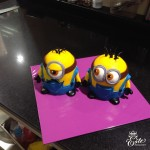 Picture cakes 204